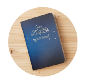 tooth fairy kit journal
