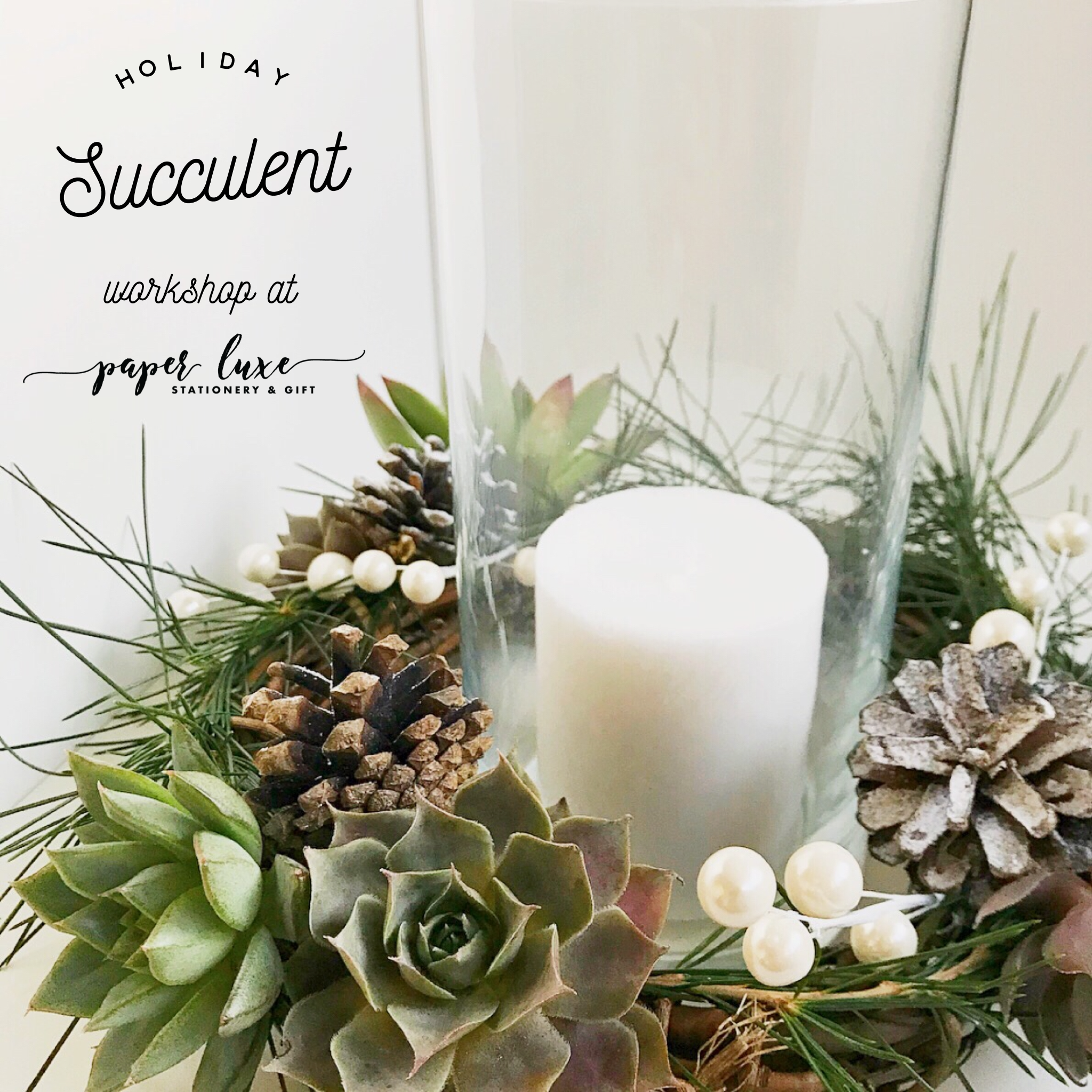 Holiday Succulent Workshop Tacoma